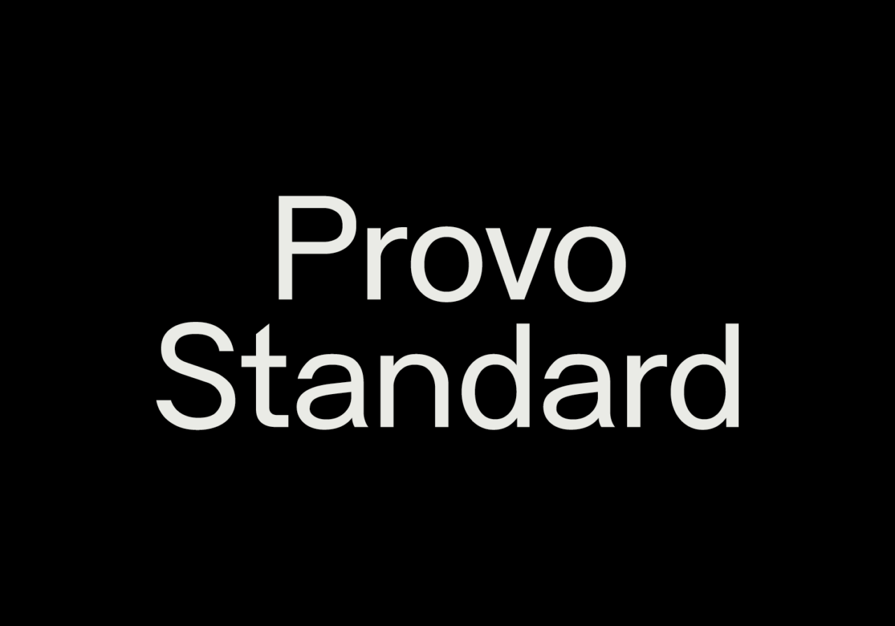 BURO PROVO Projects